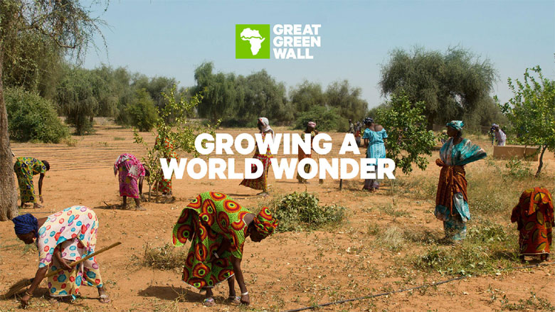 Film: The Great Green Wall + Live Q&A